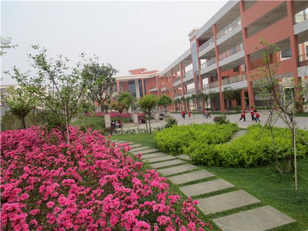 经济技术开发区实验小学校