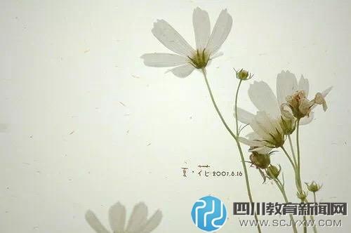 0908_3.jpg