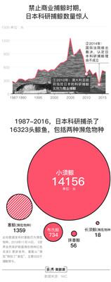 为让国民享用鲸鱼肉 日本将重启商业捕鲸