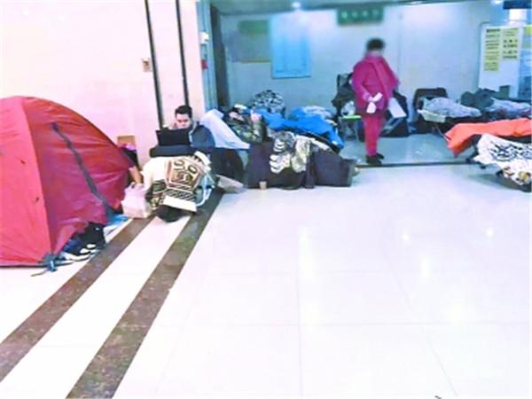 16日凌晨4点,家长们带着躺椅、帐篷排队报名。 本文图片 武汉晚报