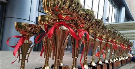 绳跃迎宾 奖杯成林 迎宾路小学校跳绳代表队载誉归来