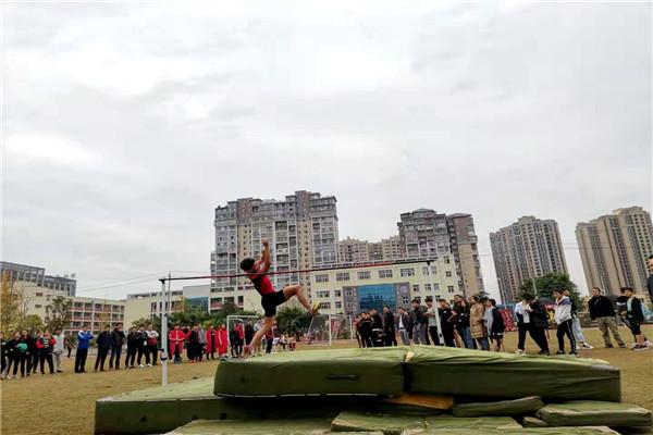 南溪区2019年中小学生田径运动会圆满结束