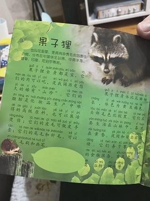 儿童刊物称果子狸可吃?