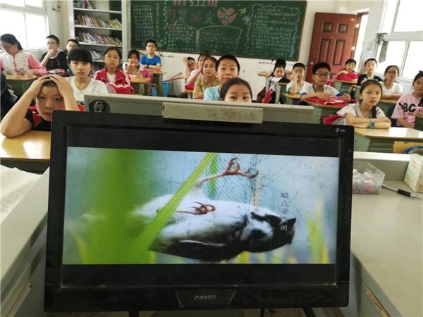 六年级学生观看微电影.jpg