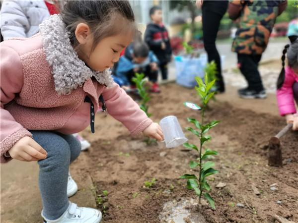 种下一棵幸福苗――康安幼儿园植树节开展主题教育活动